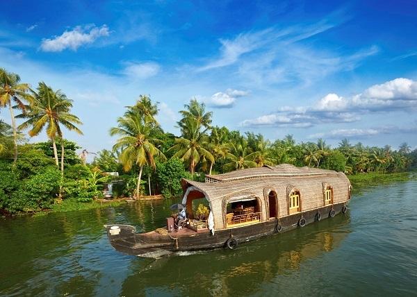 Kerala_1H x W