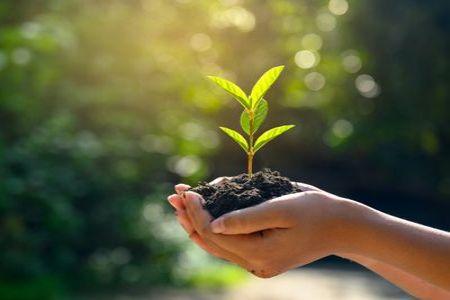 चलिए आज के दिन एक pledge लेते हैं.. #Pledge_For_Earth