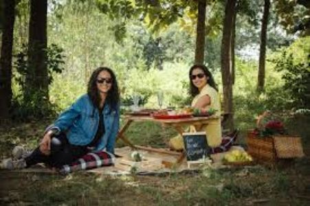 The Incredible Story of the Picnic Company