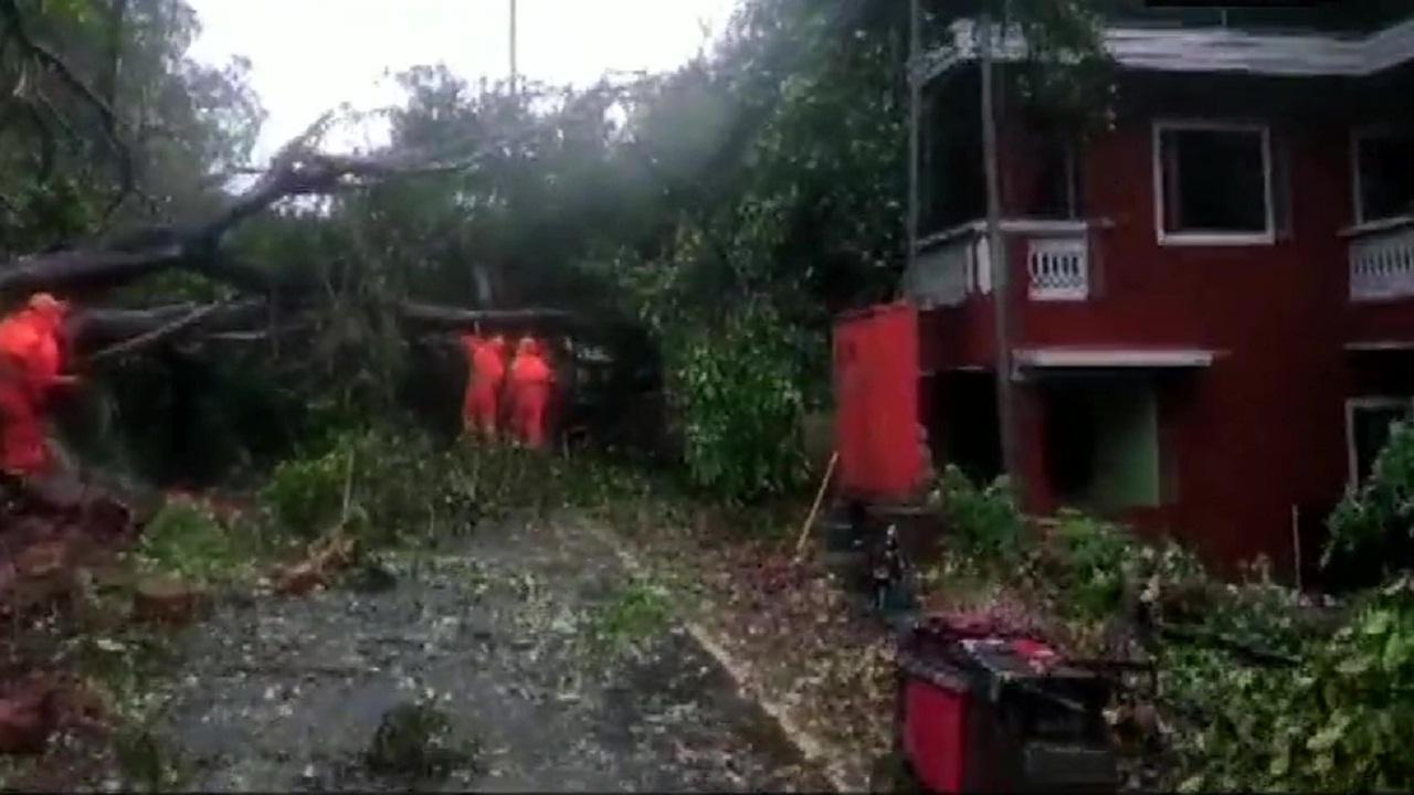 cyclone_1  H x